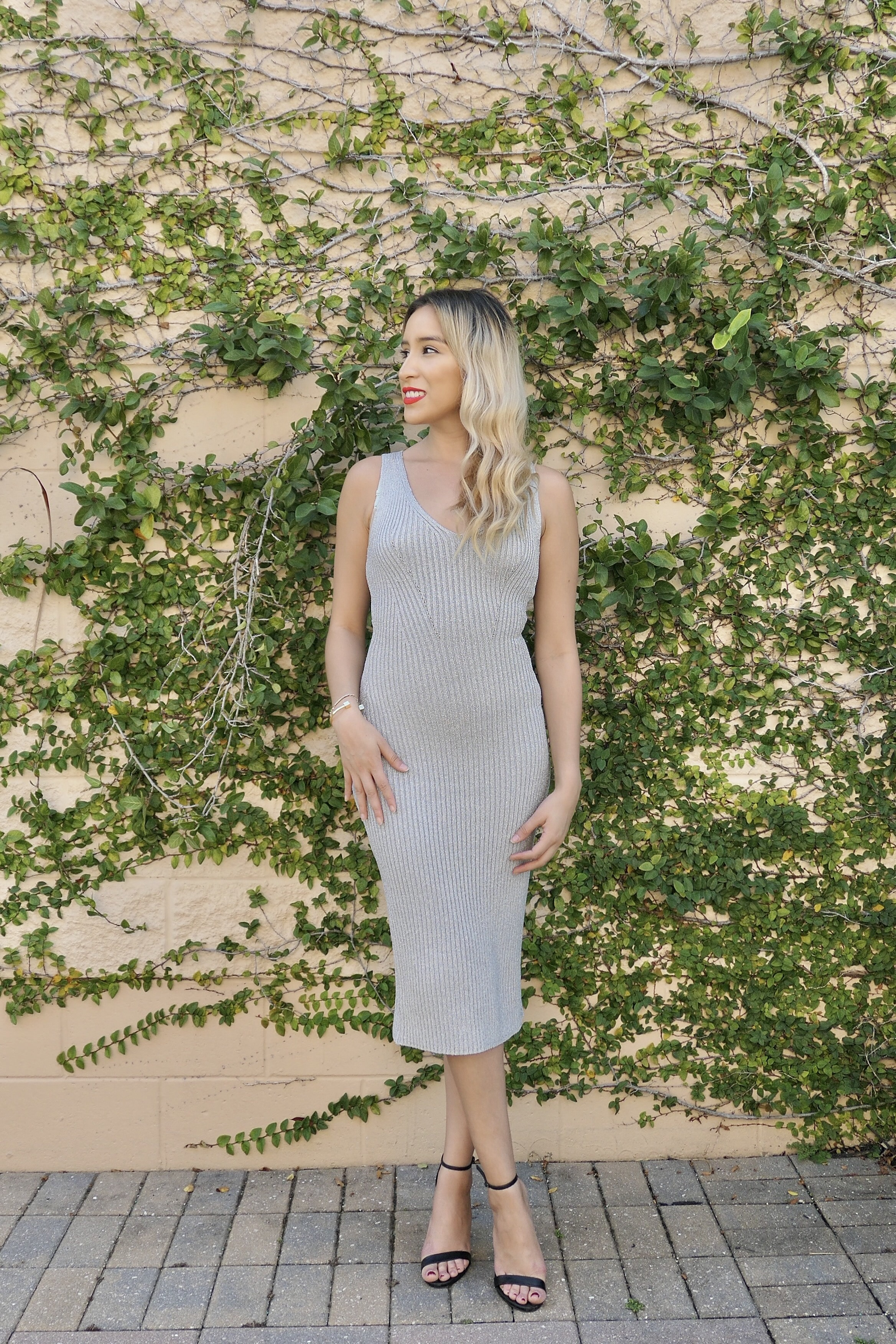 Michael Kors Silver Holiday Dress – Monica Ramos